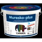 VOPSEA LAVABILA CAPAROL EXT FASSADE 2.5 L